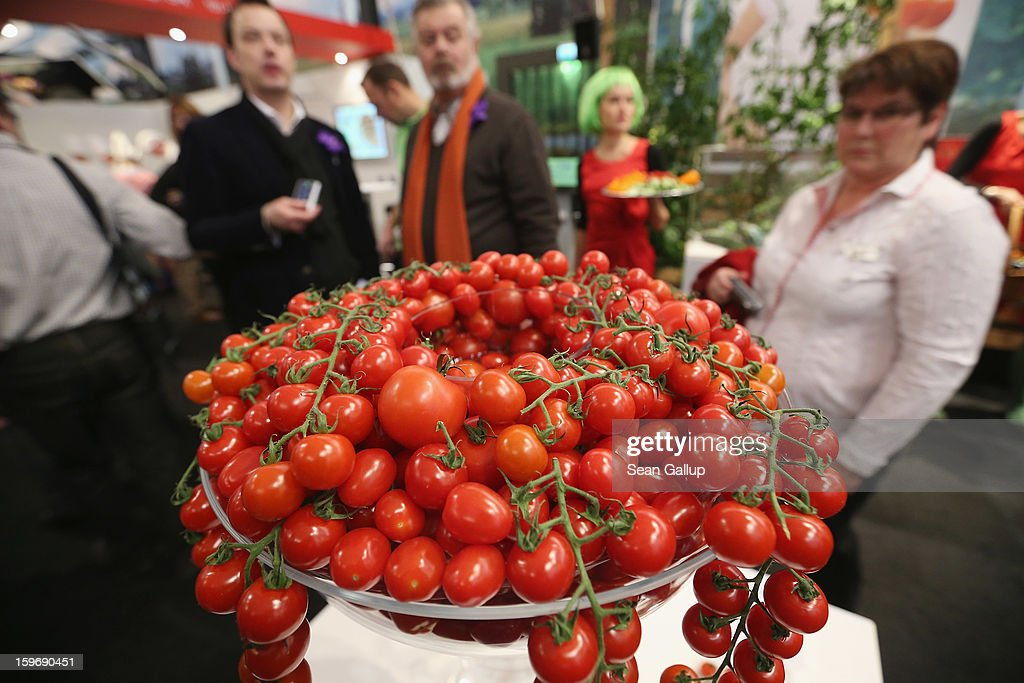 Tomatoes from Holland lie on display at a Dutch vegetable stand at the 2013 Gruene Woche agricultural trade fair on January 18, 2013 in Berlin, Germany. The Gruene Woche, which is the world's largest agricultural trade fair, runs from January 18-27, and this year's partner country is Holland.