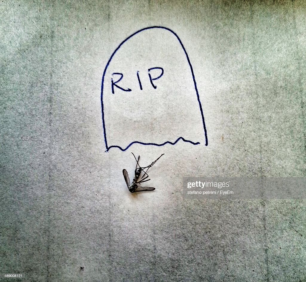 Tombstone drawn by dead mosquito