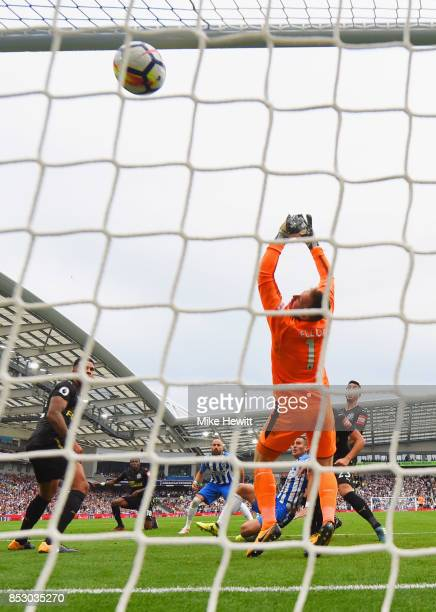 Tomer Hemed of Brighton and Hove Albion scores their first goal past Robert Elliot of Newcastle United during the Premier League match between...