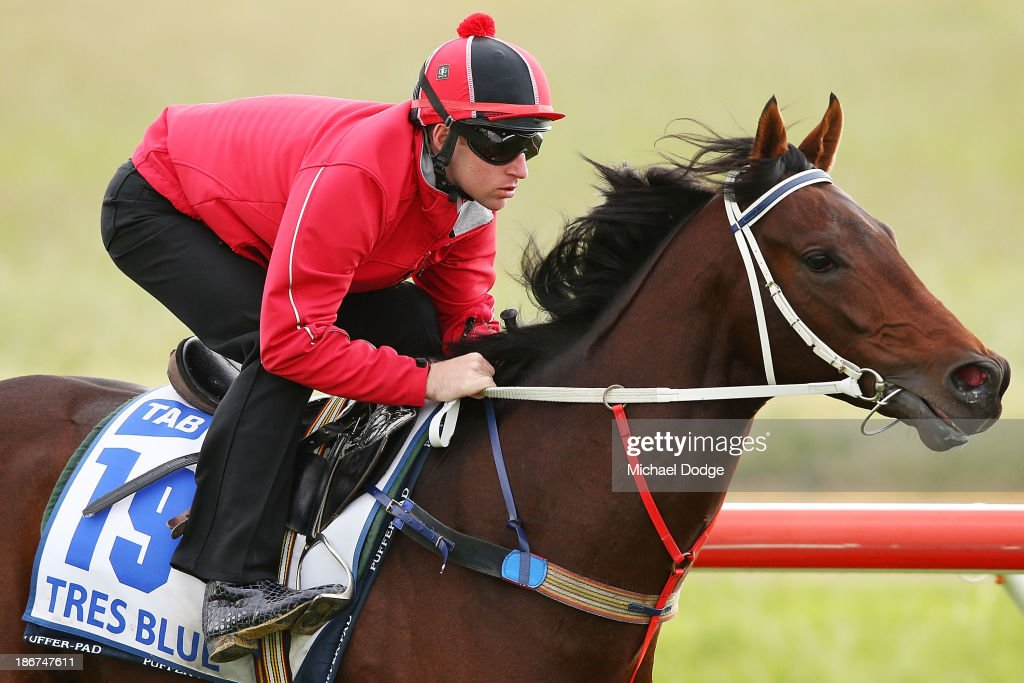Tommy Berry rides Tres Blue during trackwork ahead of the Melbourne Cup at Werribee Racecourse on November 4, 2013 in Melbourne, Australia.