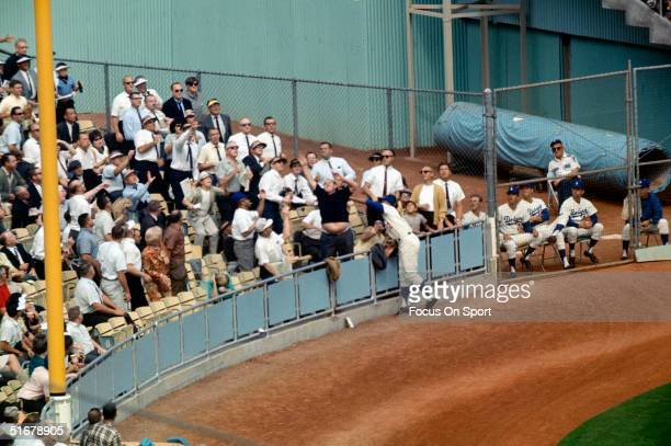Tommy Davis outfielder for the Los Angeles Dodgers reaches into the stands for a homerun during the World Series against the Baltimore Orioles at...