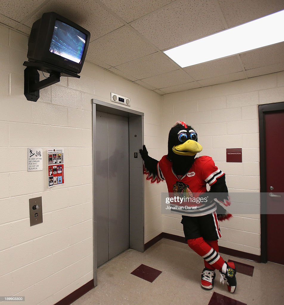 Tommy Hawk, the mascot of the Chicago Blackhawks, waits for an elevator during a game between the Blackhawks and the St. Louis Blues at the United Center on January 22, 2013 in Chicago, Illinois. The Blackhawks defeated the Blues 3-2.