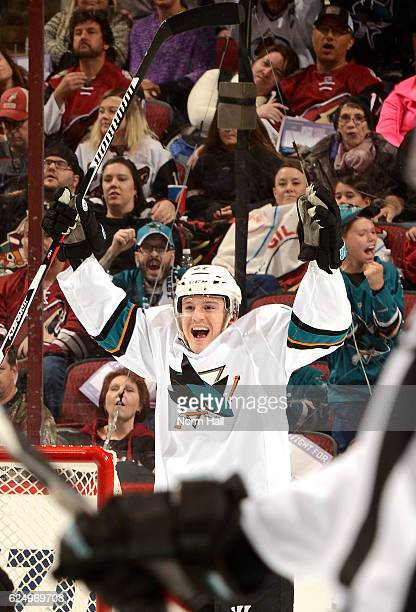 Tommy Wingels of the San Jose Sharks celebrates a goal against the Arizona Coyotes at Gila River Arena on November 19 2016 in Glendale Arizona