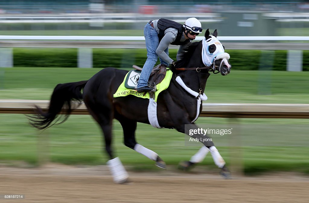 Tom's Ready runs on the track during the morning training for the 2016 Kentucky Derby at Churchill Downs on May 04, 2016 in Louisville, Kentucky.