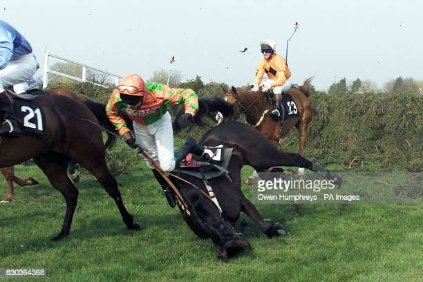 Toni's Tip ridden by Adrian Maguire falls at the first fence during the John Hughes Trophy Steeplechase at Aintree The death tally at this year's...