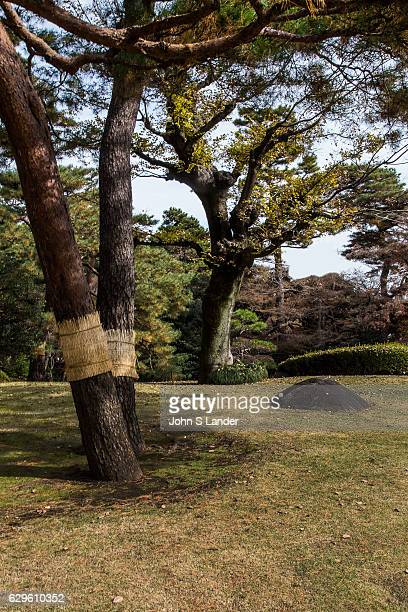 Tonogayato Garden is a landscape type garden in Kokubunji Tokyo built for the vicepresident of Manchurian Railway and is now owned by Tokyo...