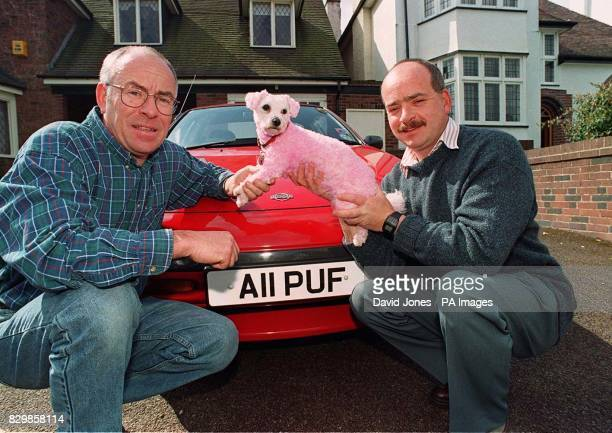 Tony Hubball of Moseley Birmingham and his brother Steve hold up Tony's Bichon Frise dog 'Lucy' which Steve dyed pink whilst his brother was on...