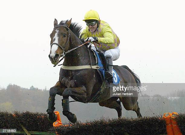Tony McCoy and Eric's Charm clear the last flight before landing The Novices Hurdle Race run at Lingfield Park racecourse on November 11 2003 at...