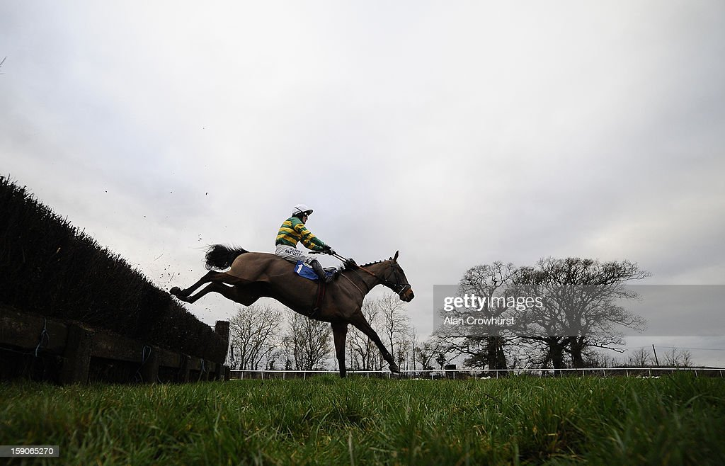 Tony McCoy riding Cantlow clear the last to win The Hippychick Novices' Steeple Chase at Taunton racecourse on January 07, 2013 in Taunton, England.