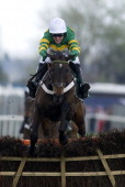 Tony McCoy riding Darlan win The Tangle Teezer Top Novices' Hurdle Race at Aintree racecourse on April 13 2012 in Liverpool England