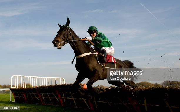 Tony McCoy riding Grandouet clear the last to win The Betfair Hurdle Race at Haydock racecourse on November 19 2011 in Haydock England