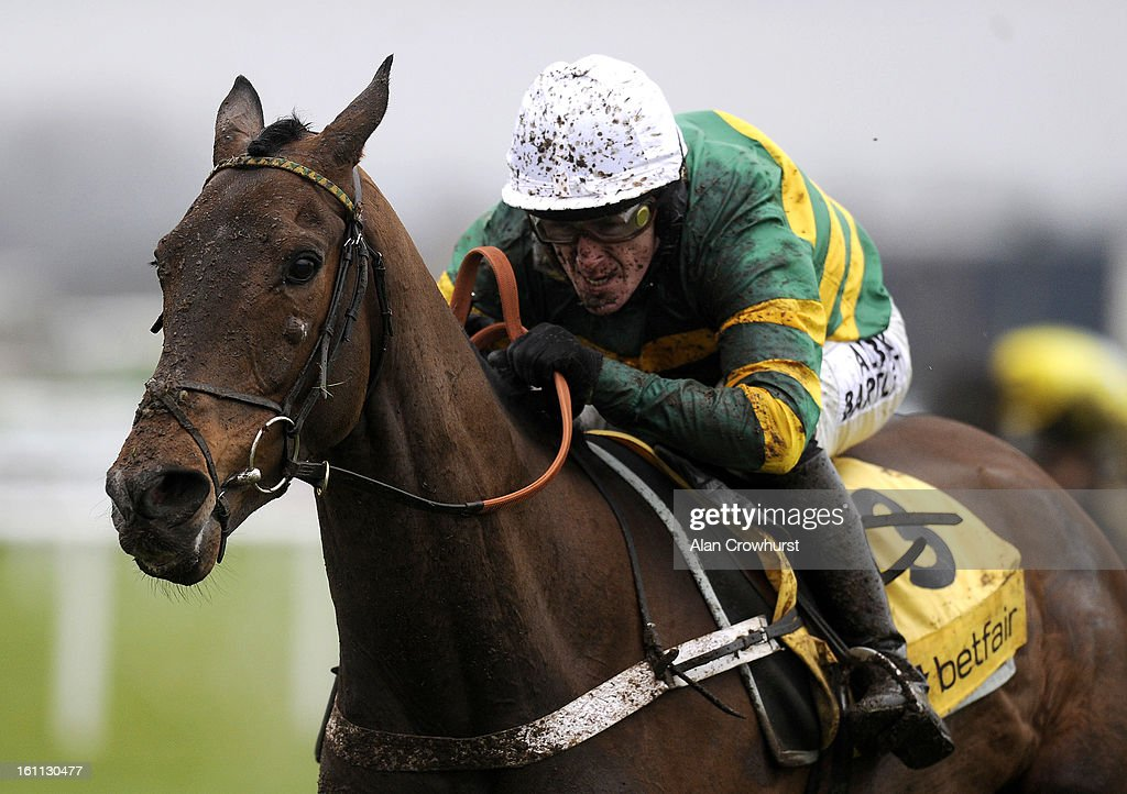 Tony McCoy riding My Tent Or Yours clear the last to win The Betfair Hurdle Race at Newbury racecourse on February 09, 2013 in Newbury, England.