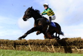 Tony McCoy riding Plinth in action at Leopardstown racecourse on February 09 2014 in Dublin Ireland