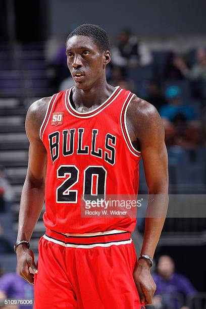 Tony Snell of the Chicago Bulls looks on during the game against the Charlotte Hornets on Februay 8 2016 at Time Warner Cable Arena in Charlotte...