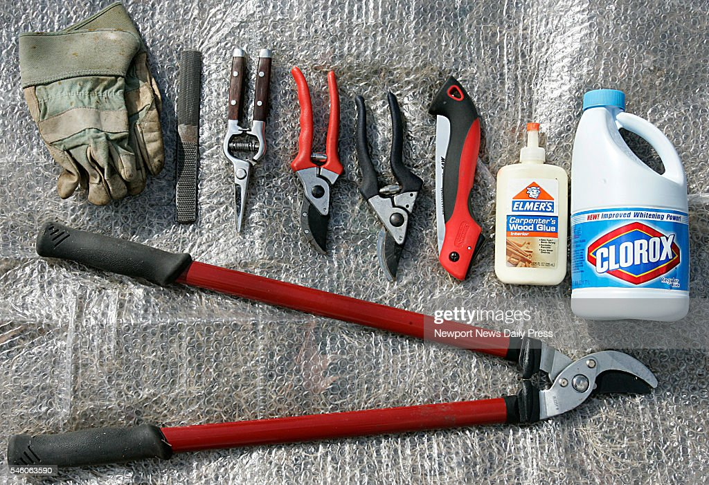 Tools for prunning include gloves a sharpener a hand saw bleach and an assortment of prunning shears