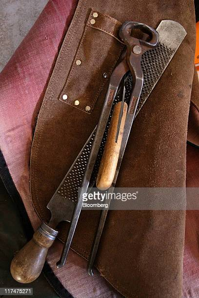 Tools for replacing horseshoes are displayed at the Baerami Thoroughbreds ranch near Denman New South Wales Australia on Sunday June 26 2011 A...