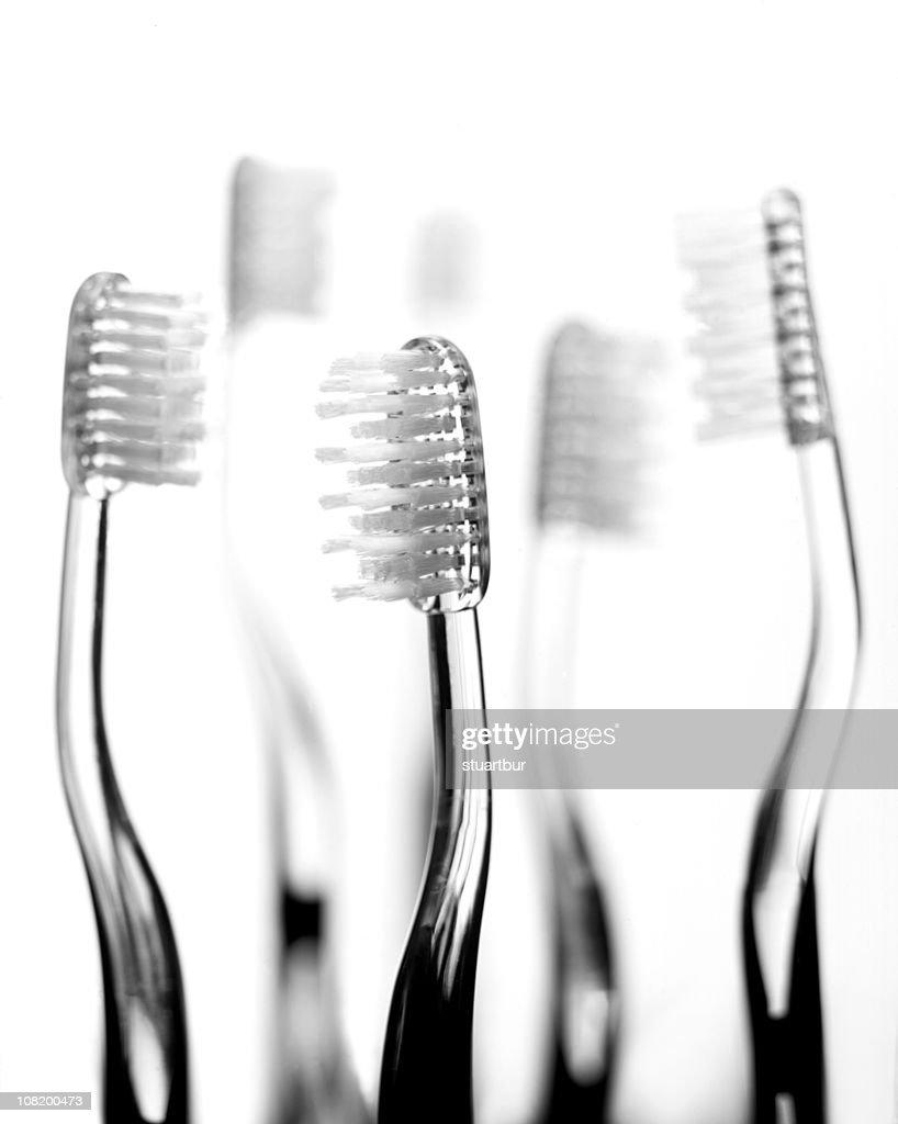 toothbrush : Stock Photo