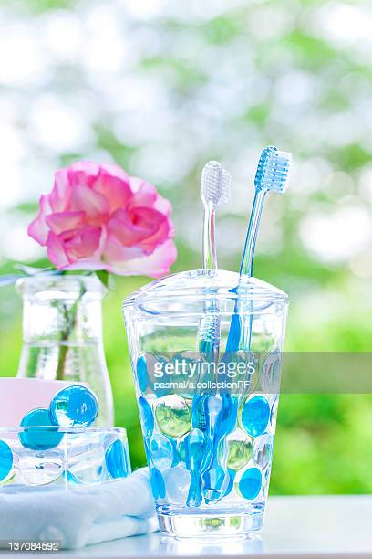 Toothbrushes in a holder