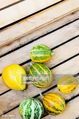 top view decorative pumpkins lying on striped wooden background : Stock Photo