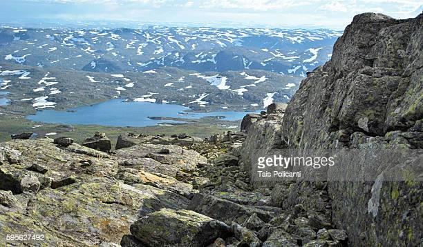 Top view Halligskarvet mountain in central Norway, Scandinavia, Europe
