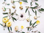 Top view of a eucalyptus branches and dry roses with anemone in the middle chaotically lying on the white background making a floral pattern