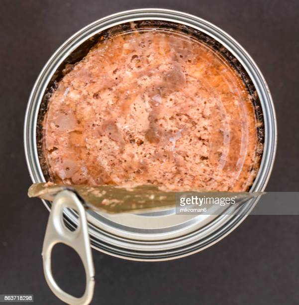 Top view of an opened can of beef dog food