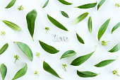Top view of beautiful fresh green leaves and love symbol isolated on white, wedding invitation floral concept