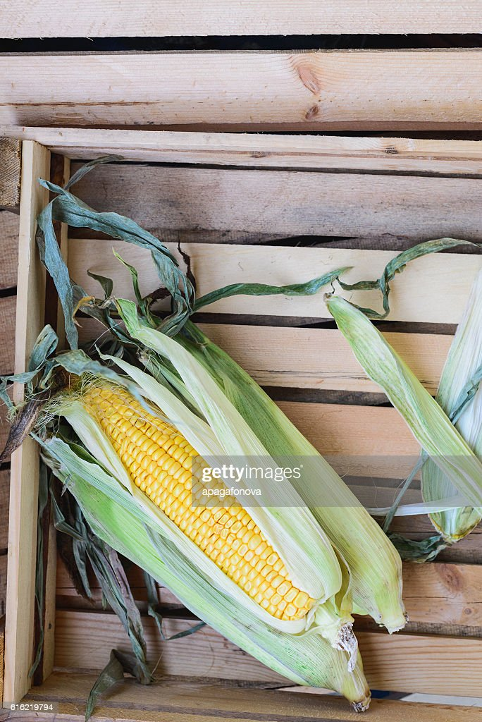 top view of cob corn on the wooden background : Foto stock
