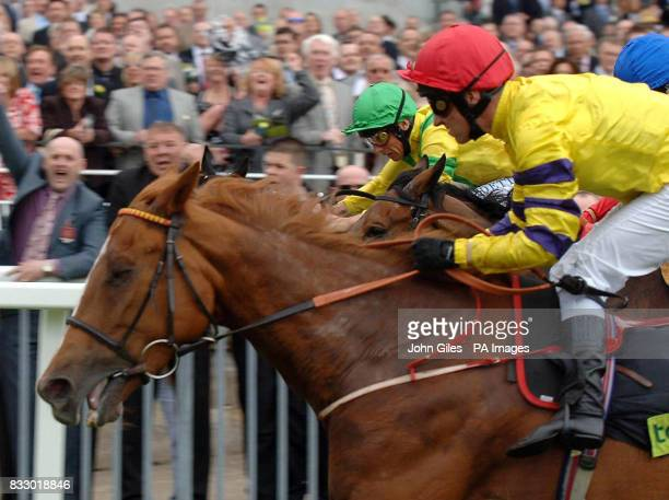 Topatoo ridden by Michael Hills get up on the line to beat Frankie Dettori and Anna Pavlova in the Totepool Middleton Stakes at York Racecouse