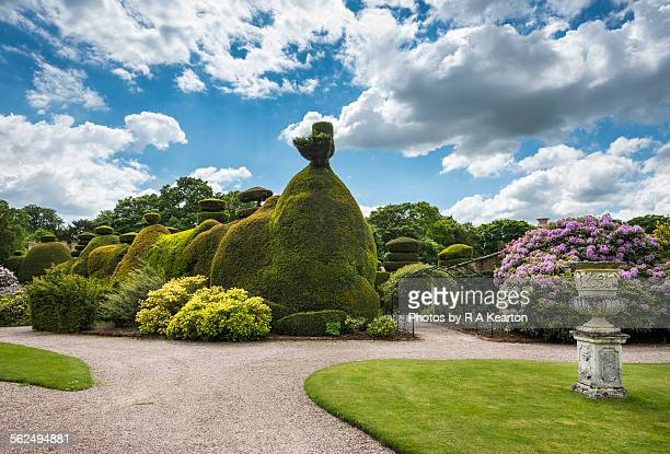 Topiary at Tatton Park, Cheshire
