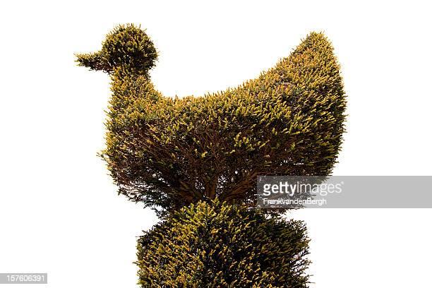 Topiary Bird
