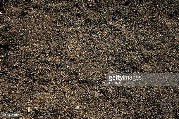 Terre arable fond