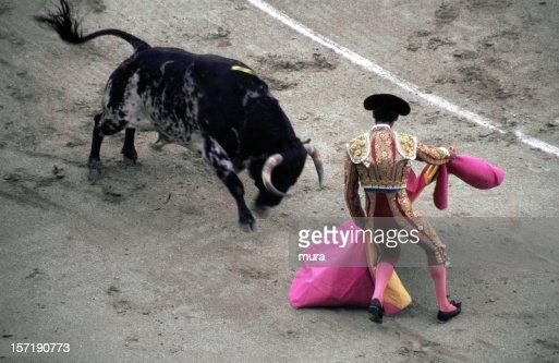 Toreador - Bullfight