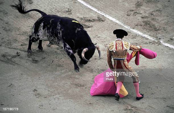 Toreador - Bullfight
