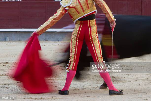 Torero - Bullfighter