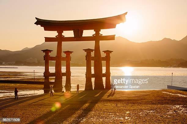 Torii gate in Miyajima during sunset, Japan