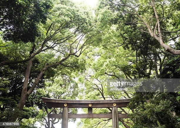 Portal Xintoísta Japonês ao Santuário de Meiji em