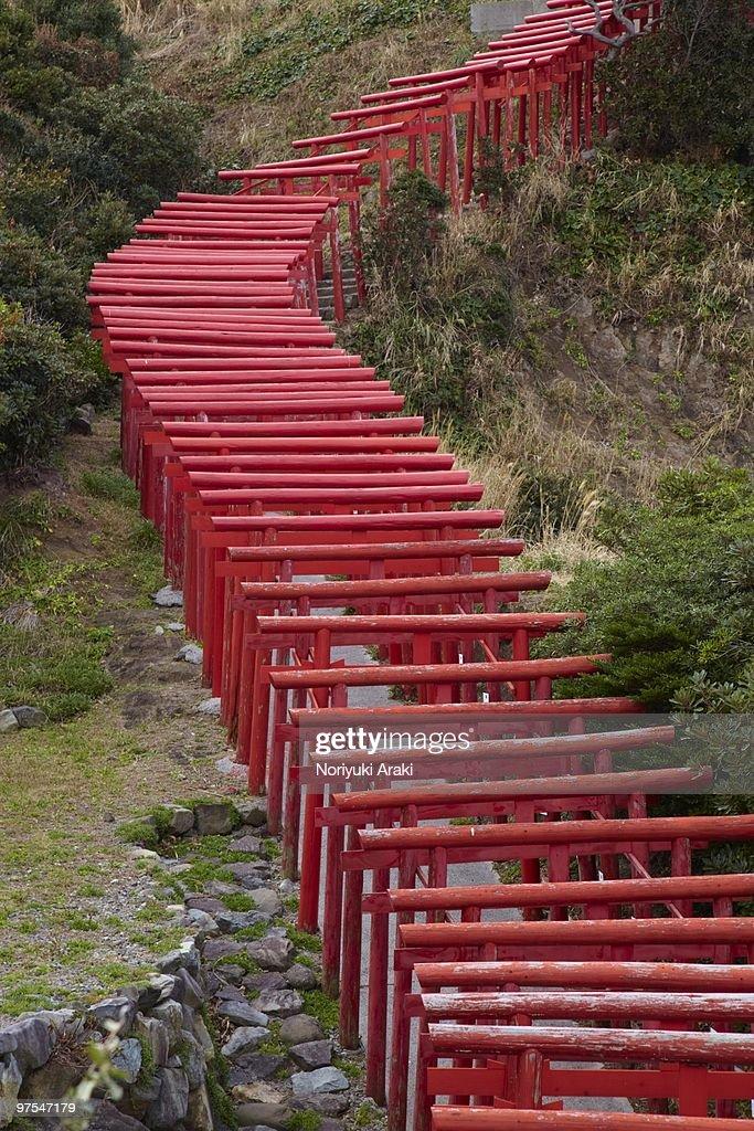 Torii Gate,Japan