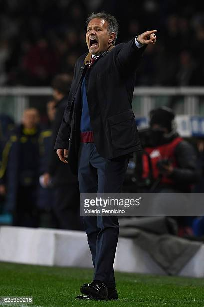 Torino head coach Sinisa Mihajlovic shouts to his players during the Serie A match between FC Torino and AC ChievoVerona at Stadio Olimpico di Torino...