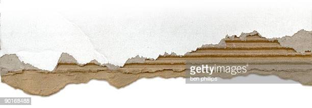 Torn cardboard edge
