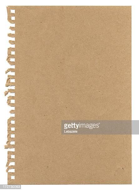 XXXL Torn Notepaper
