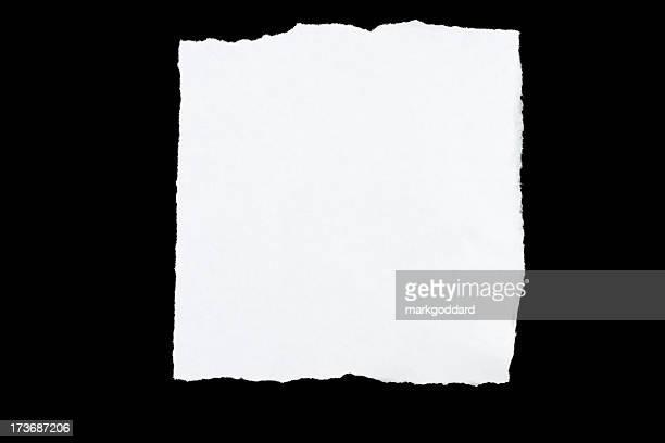 Torn Paper Series: Square