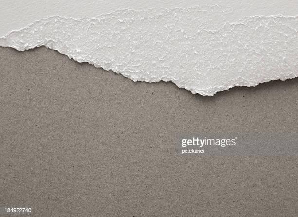 Torn Watercolor Paper