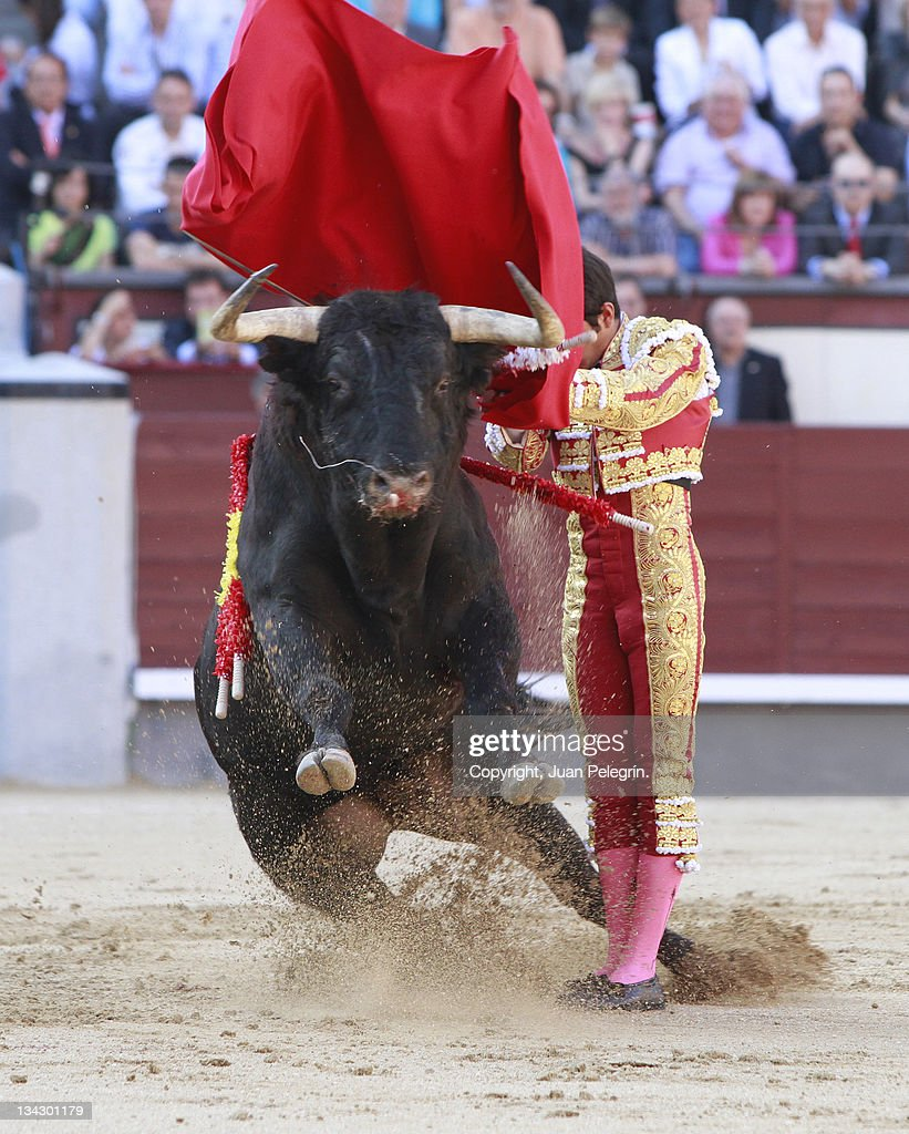 Toro, salto : Stock Photo