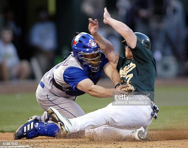Toronto Blue Jays' catcher Ken Huckaby puts the tag on Oakland Athletics' Jeremy Giambi for an out at homeplate during the third inning 10 May 2002...