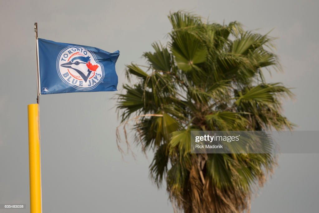 Toronto Blue Jays flag flies over the complex with a nearby palm tree.Toronto Blue Jays first day of formal workouts at Bobby Mattick Training Centre as the Jays open Spring Training camp. Toronto Star/Rick Madonik