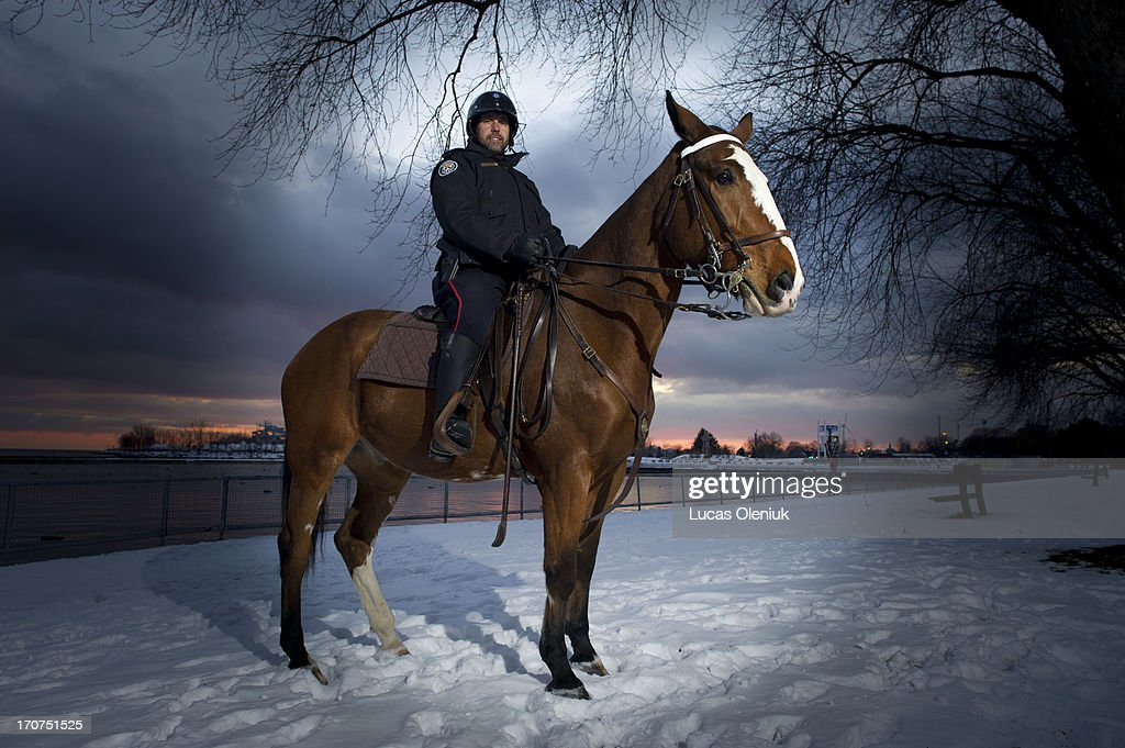 Image result for honest ed the toronto police horse