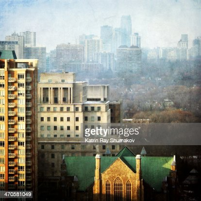 Toronto's Mixed Forest. In Morning Light : Stock Photo