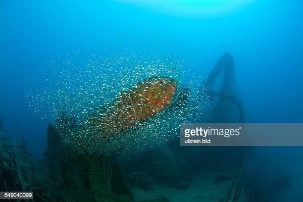 Torpedos of Destroyer USS Lamson Marshall Islands Bikini Atoll Micronesia Pacific Ocean