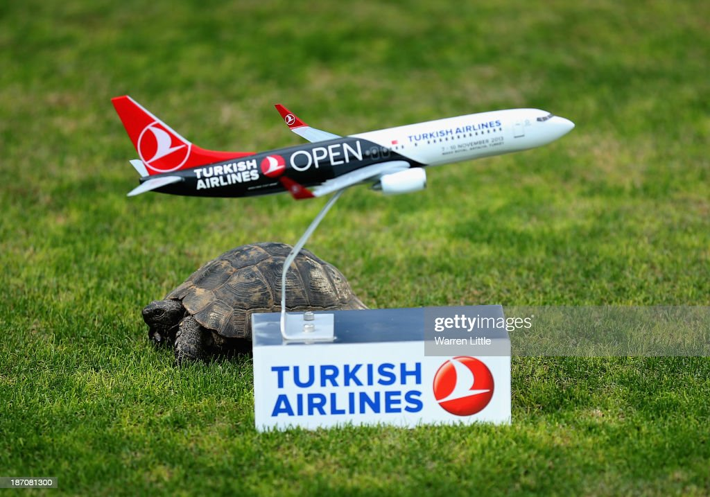 A tortoise passes a tee marker during the pro-am as a preview for the Turkish Airlines Open at Montgomerie Maxx Royal Course on November 6, 2013 in Antalya, Turkey.
